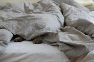 Calming blankets Melbourne